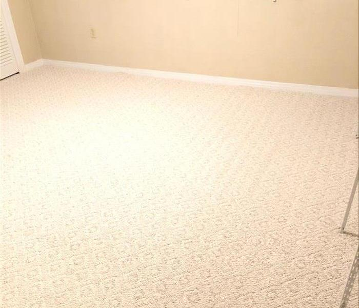 Carpet Cleaning in Mobile, AL Before